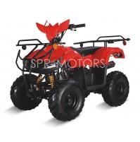 Квадроцикл (ATV) SPR LMATV-110W